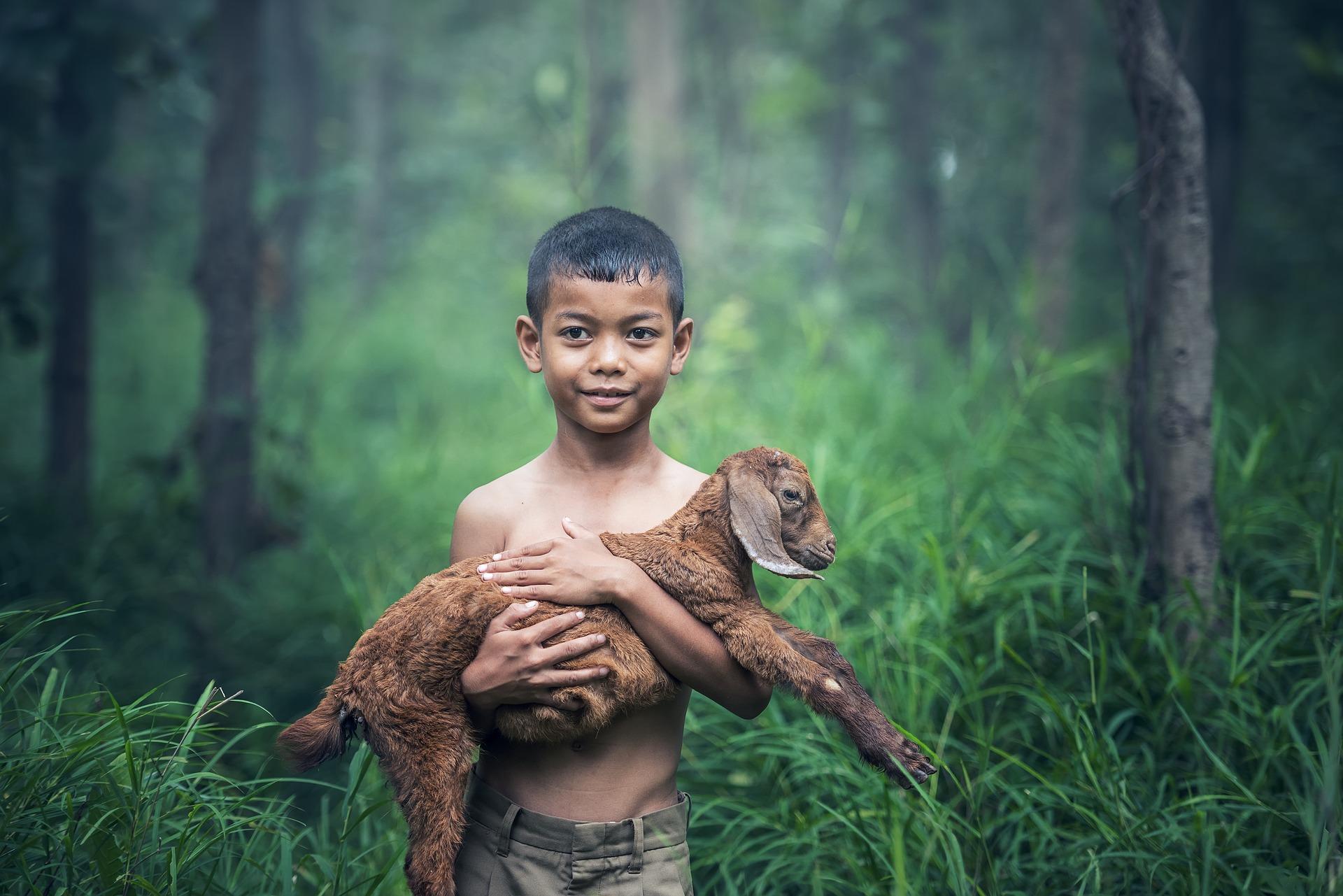 Enfant souriant avec un agneau dans les bras